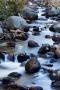 Creek;Water;Water-Flow;Rocks;Scenic;Glacier-Creek;Rocky-Mountain-National-Park;C
