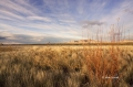 Scenic;Bosque-del-Apache;Sunrise;New-Mexico;Clouds
