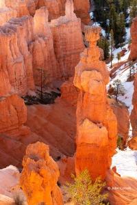 Bryce-Canyon-National-Park;Desert;Erosion;Hoodoos;Landscape;Red-Rocks;Sandstone;