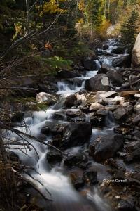 Brook;Glacier-Creek;Rocks;Rocky-Mountain-National-Park;Scenic;Warter;Water-Flow;